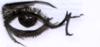 Declin_doeil_par_mathilde_tixie_1